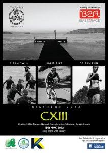 CXIII_2013_poster